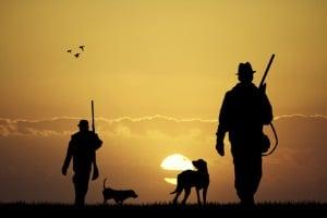 Unter Umständen ist von der Hundesteuer bei Hartz 4 befreit, wer einen Jagdhund hält.
