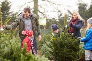 Weihnachtsgeld für Hartz-4-Empfänger könnte beispielsweise dazu dienen, einen Weihnachtsbaum zu kaufen.
